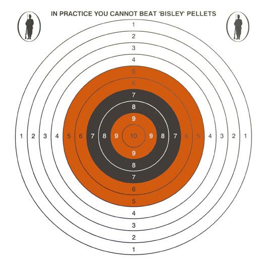 Bisley 17cm single target pk 100
