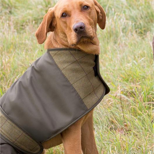 Dog Coat Tweed Lichen